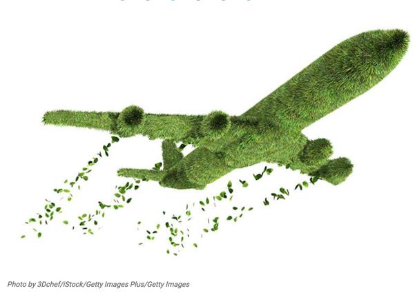 Es ist nicht alles grün was glänzt!